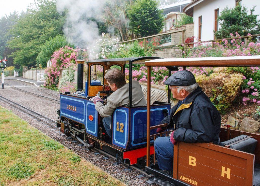 Drive a Steam Train at Pecorama - Driver Experiences
